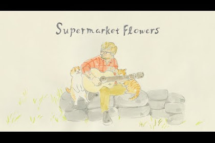Lyric Song Supermaket Flowers - Ed Sheeran (MP3 LIRIK)