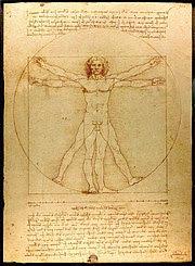 "Detail from Leonardo da Vinci's ""Vitruvian Man"""
