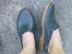 Trusty old clogs