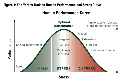 The Science of Stress Management: Your Brain on Cortisol ...