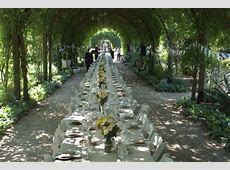Outdoor Wedding Reception under a Wisteria Archway at Alowyn Gardens. One continuous table using