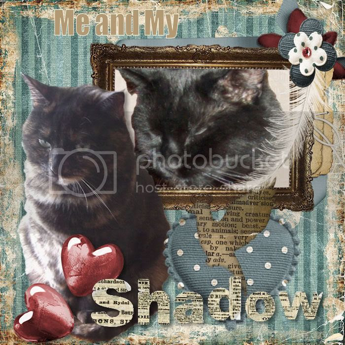 Georgia's Valentine to Shadow