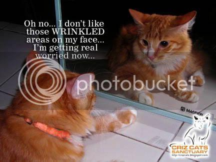 WRINKLED04
