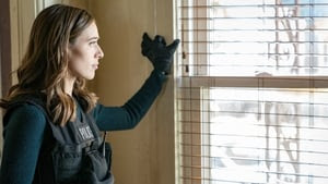 Chicago P.D. Season 5 : Confidential