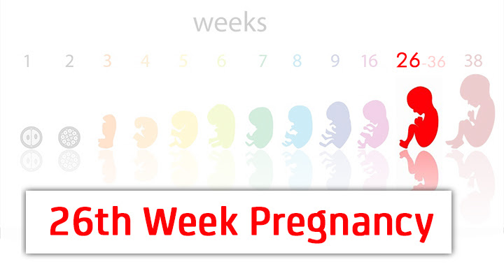 My pregnancy story : Sudah 26 minggu.... Alhamdullilah....