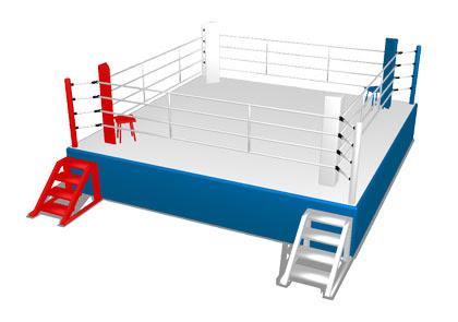 MMD Fighting Ring