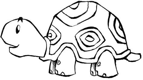 zoo animal coloring pages bestofcoloringcom