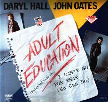 Adult Education (song)