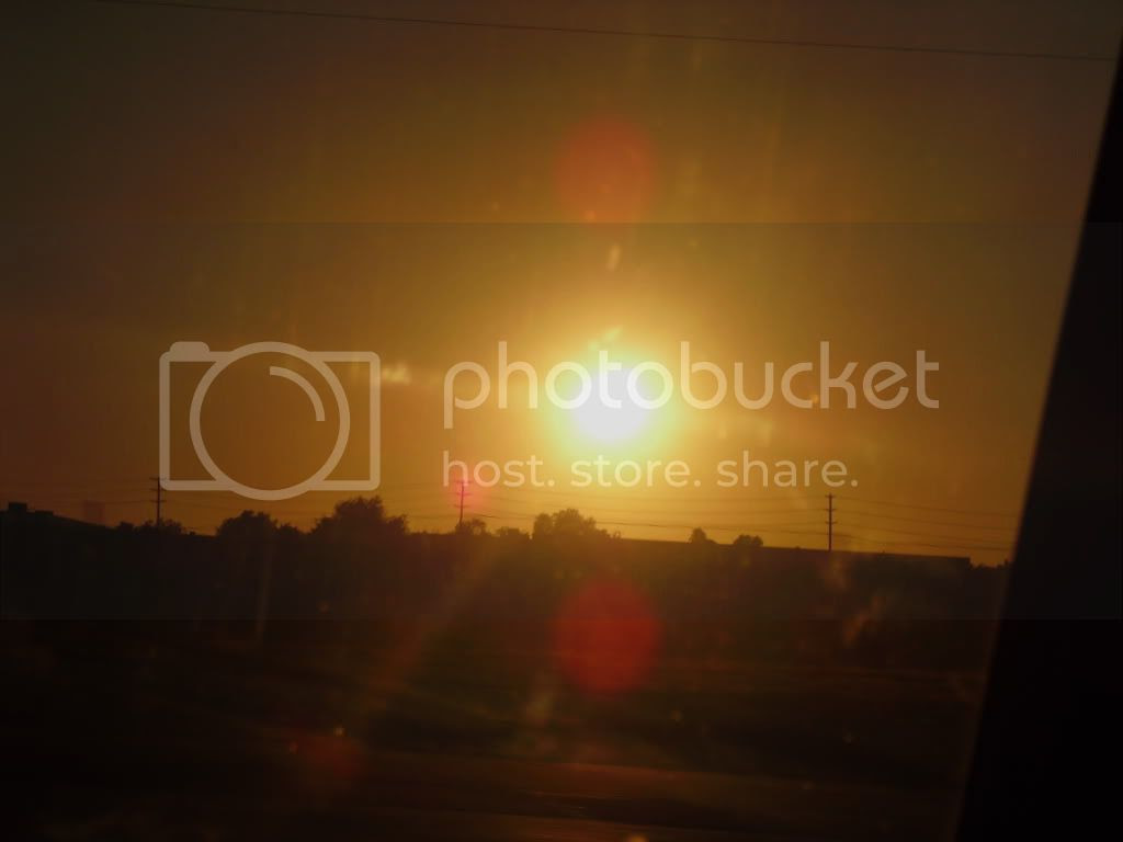The sunset Pictures, Images and Photos