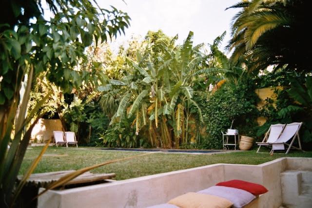 Garten im Little Lemon, Kapstadt
