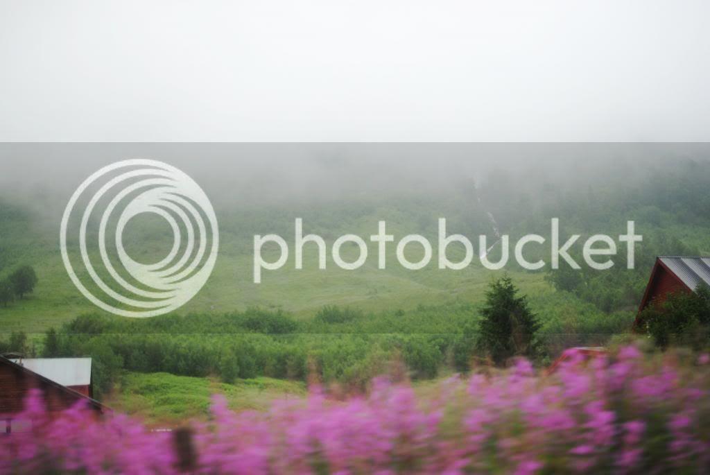 photo norja082_zps892b412f.jpg