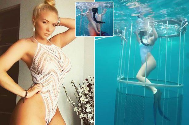 Image result for Model's Shark Cage Shoot Goes Horrifically Wrong As She's Bitten Underwater
