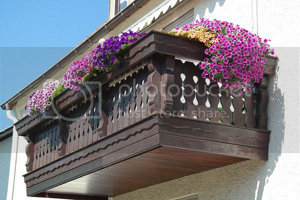 How to Maintain a Small Garden on Your Apartment- Terrace