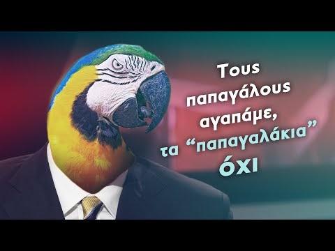 To σποτ της ΚΝΕ για «παπαγαλάκια» κατά Πρετεντέρη, Πορτοσάλτε, Οικονόμου