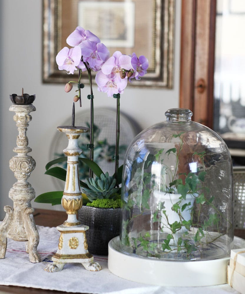 ORCHID-AND-candles
