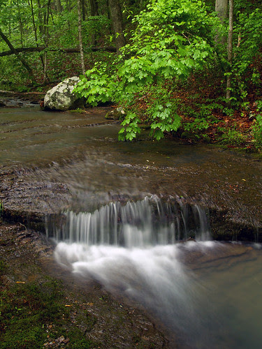 Waterfall by Pam's Grotto