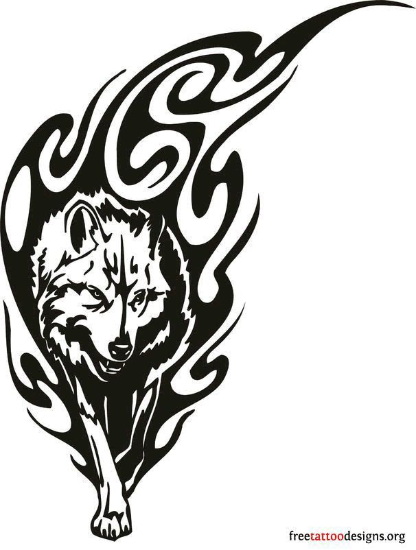 Wolf Head Drawing At Getdrawingscom Free For Personal Use Wolf