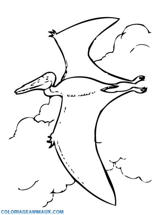 204 Dibujos De Dinosaurios Para Colorear Oh Kids Page 7