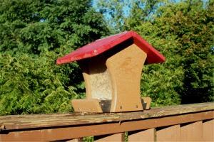 Deadly bird feeder