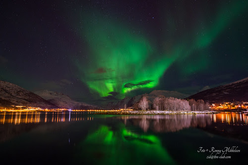 Fjords filled with Northern Lights