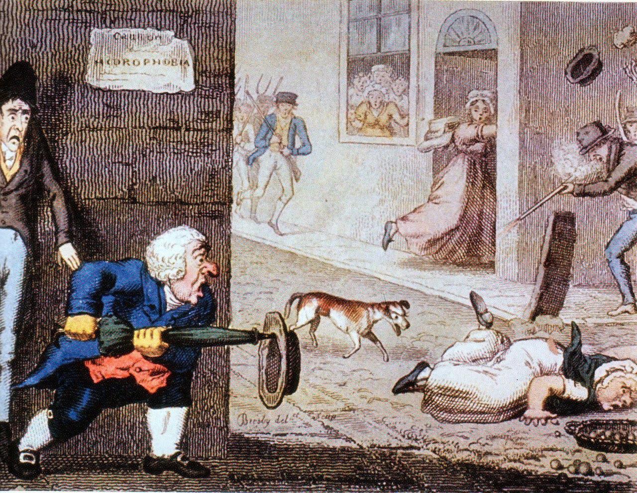 http://upload.wikimedia.org/wikipedia/commons/thumb/a/a7/Rabies_cartoon_circa_1826.jpg/1280px-Rabies_cartoon_circa_1826.jpg