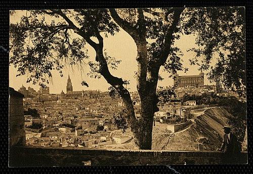 Gran almez (Celtis australis) en la Ermita del Valle (Toledo) hacia 1950
