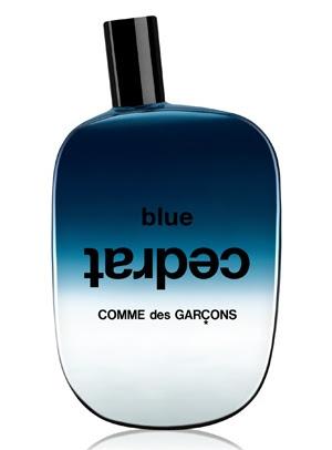 Blue Cedrat Comme des Garcons Compartilhado