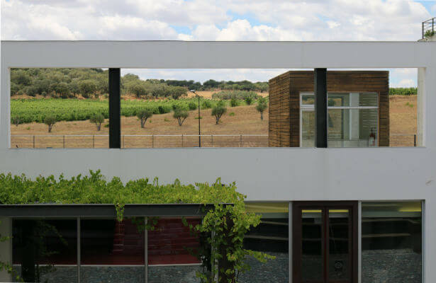 Blend-All-About-Wine-Herdade do Rocim-Inside herdade do rocim Herdade do Rocim Blend All About Wine Herdade do Rocim Inside