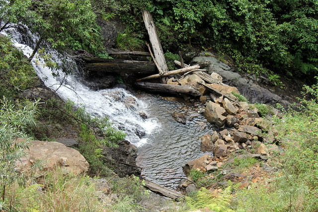 8533 Waters Falling