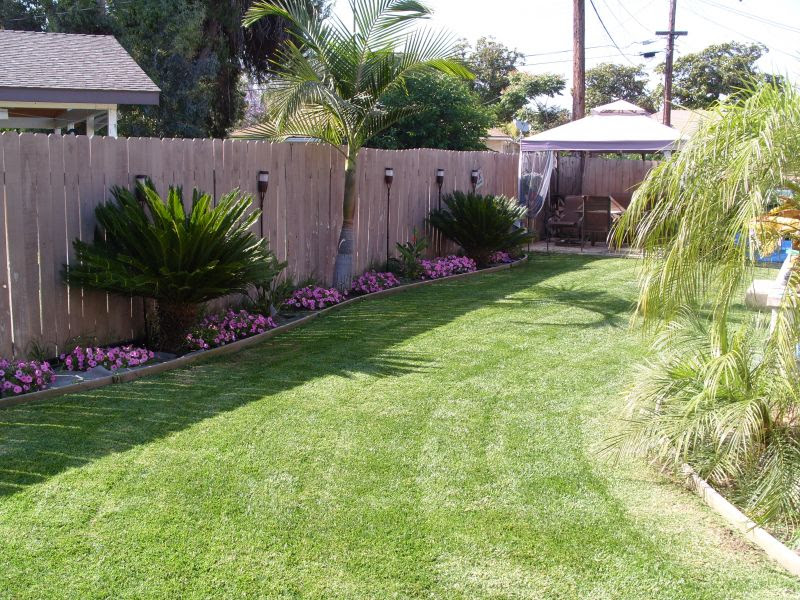 Small Tropical Back Yard Landscaping Ideas