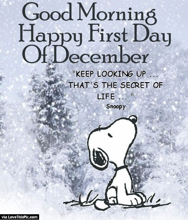 Good Morning Happy First Day Of December Pictures Photos And
