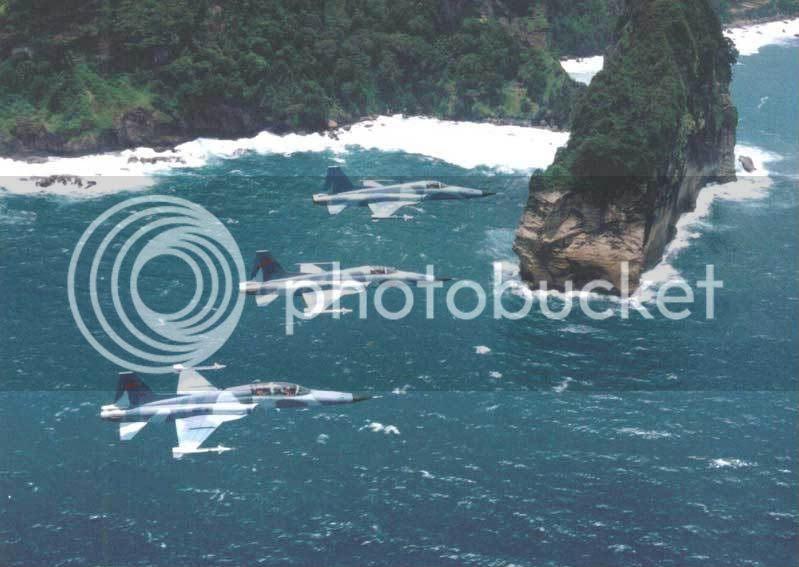 Pesawat Tempur F-5 TNI-AU