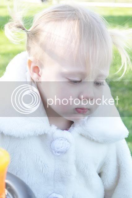 photo 025-16.jpg