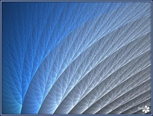 Blue Membrane