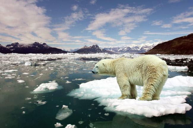 Resultado de imagen de cambio climatico