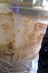 My cuppa frappe