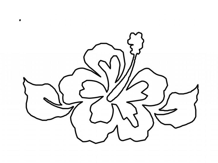1000 Images About Flower Coloring Pages Coloring Clipart Best Clipart Best