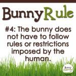 Bunny Rule 4