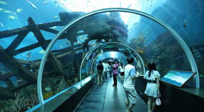 Top Attractions in Sentosa Island