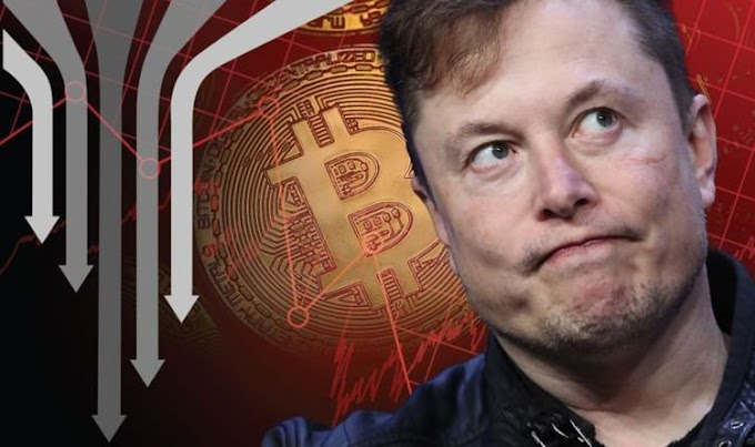 Cryptocurrency price LIVE: Elon Musk's reign of terror continues - Bitcoin plummets 4.2%