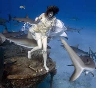 Fat Knowledge Underwater Nude Model Bitten By Shark On