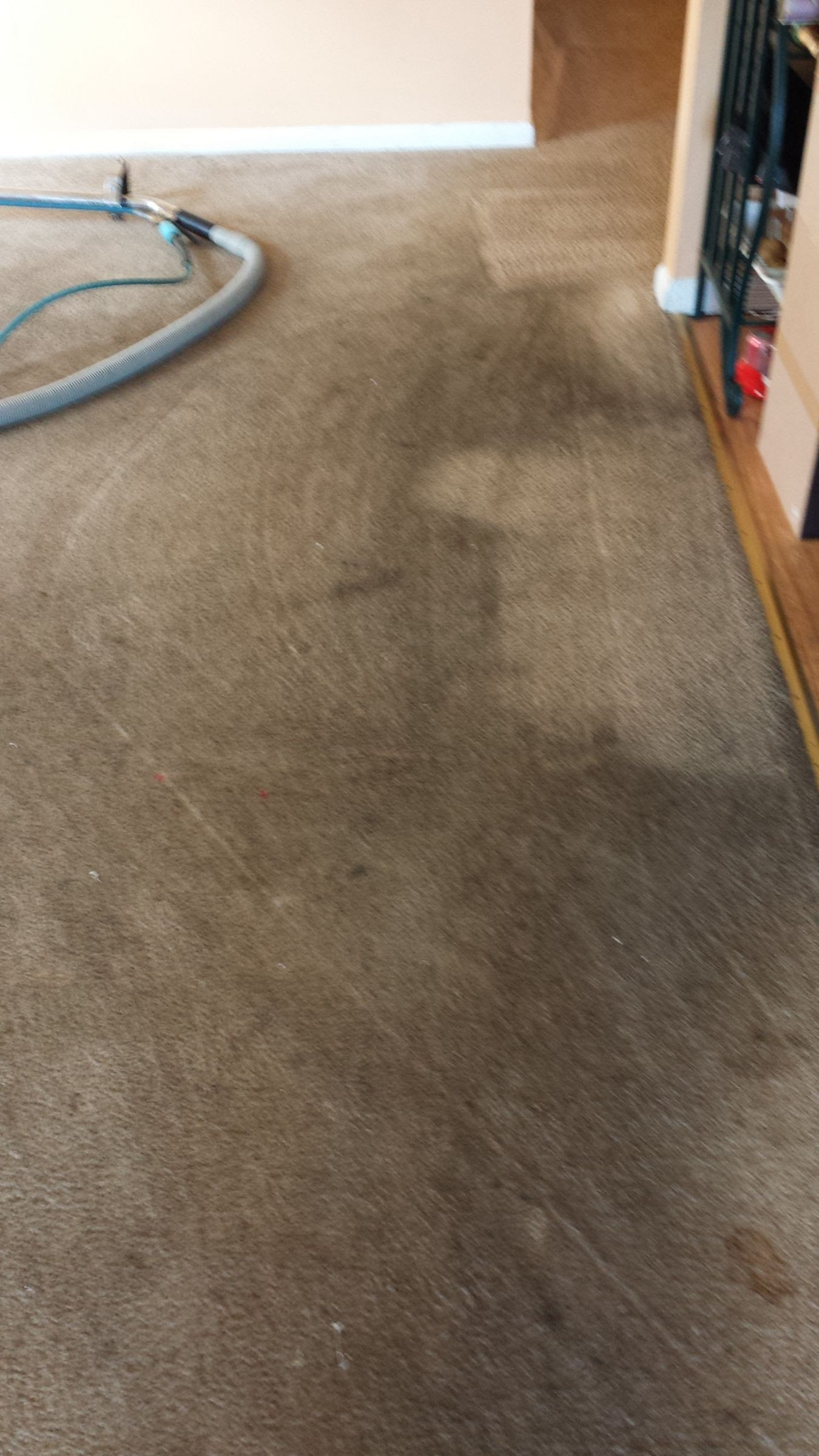 Best Carpet Cleaning In Cherry Hill Nj