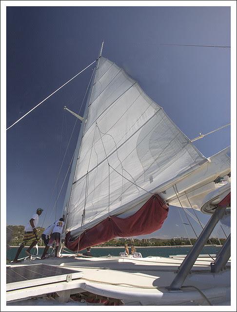 Marlin del Rey 1