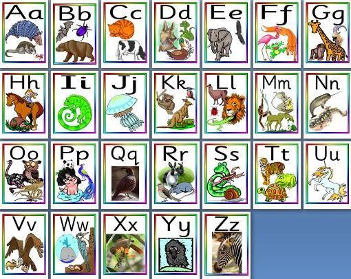 EYFS, KS1 Literacy Teaching Resources - Animal Alphabet, Animal ...