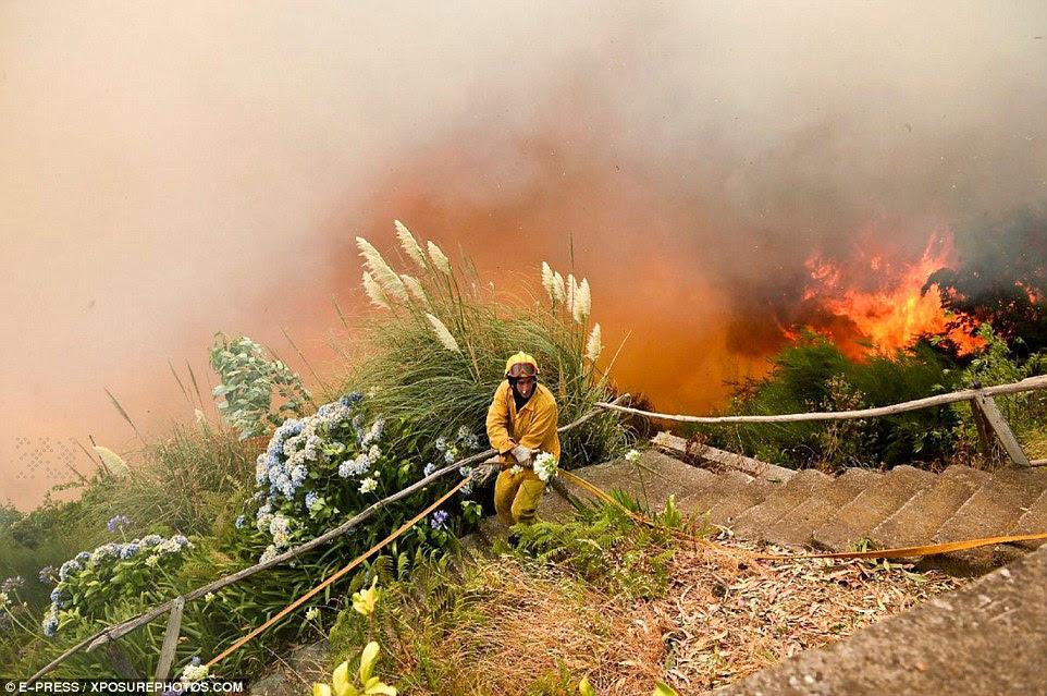 Bombeiros - ou pompiers, como são conhecidos na França - estão arriscando suas vidas para estancar as chamas.  Aqui um bombeiro transporta uma mangueira para baixo uma colina apenas jardas de um fora de controlar o fogo