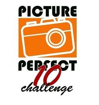pixperfect10small