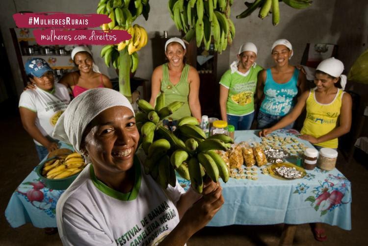 FAO e ONU Mulheres promovem concurso de receitas e negócios sustentáveis para mulheres rurais/onu mulheres ods noticias mulheres rurais igualdade de genero direitosdasmulheres