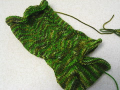 Swampy sock pre-frogpond