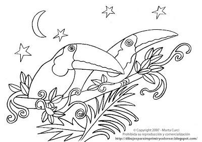 Dibujos Para Imprimir Y Colorear De Animales De La Selva Dibujo De