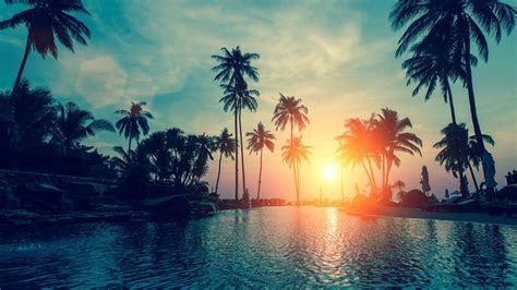 wallpaper sunset palm trees tropical beach hd nature  popular  wallpaper